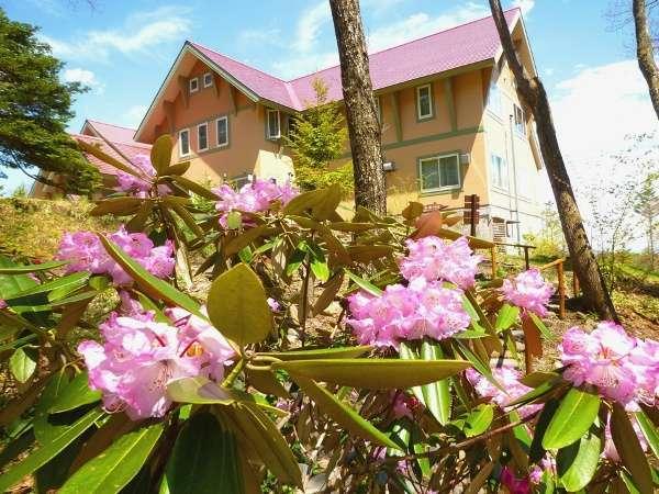 草津温泉 丘の上のホテル 写真