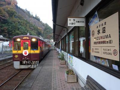 北関東の鉄道に乗りに行く【その5】 わたらせ渓谷鉄道に乗る