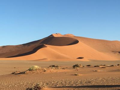 ナミブ砂漠の画像 p1_33