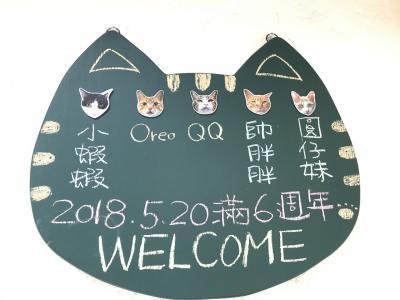 マイル特典旅行で初の花蓮 & 毎度の台北と猫村?トン �
