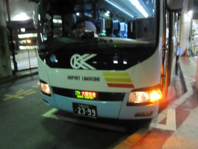 Lrg_11410848