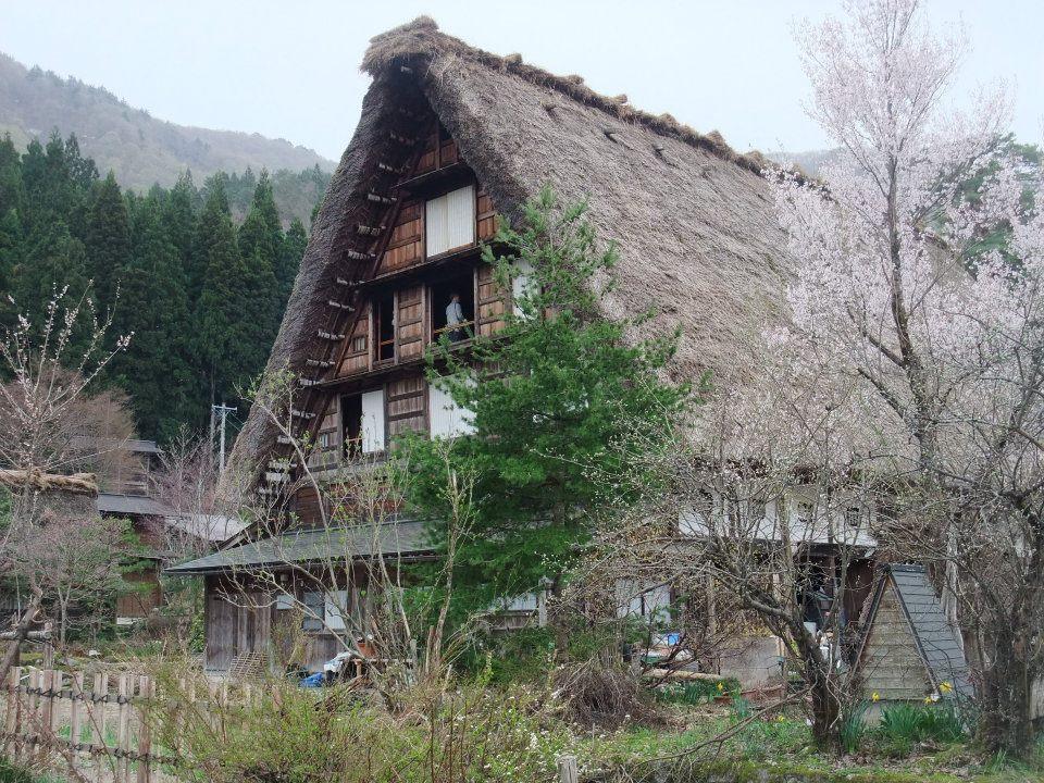 白川郷・五箇山の合掌造り集落の画像 p1_16