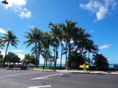 眩しい日差しがいいですね!またハワイに行きたくなります。
