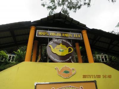 タクシーの運転手が連れてきた紅茶園 キャメロン バレー ティ ハウス(CAMERON VALLEY TEA HOUSE)です! ボーティー(BOH TEA)の方が有名かも知れませんが、こちらもそこそこで〜す!