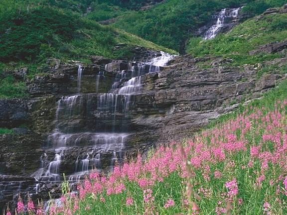グレイシャー国立公園の画像 p1_27