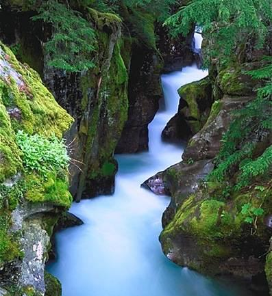 グレイシャー国立公園の画像 p1_22