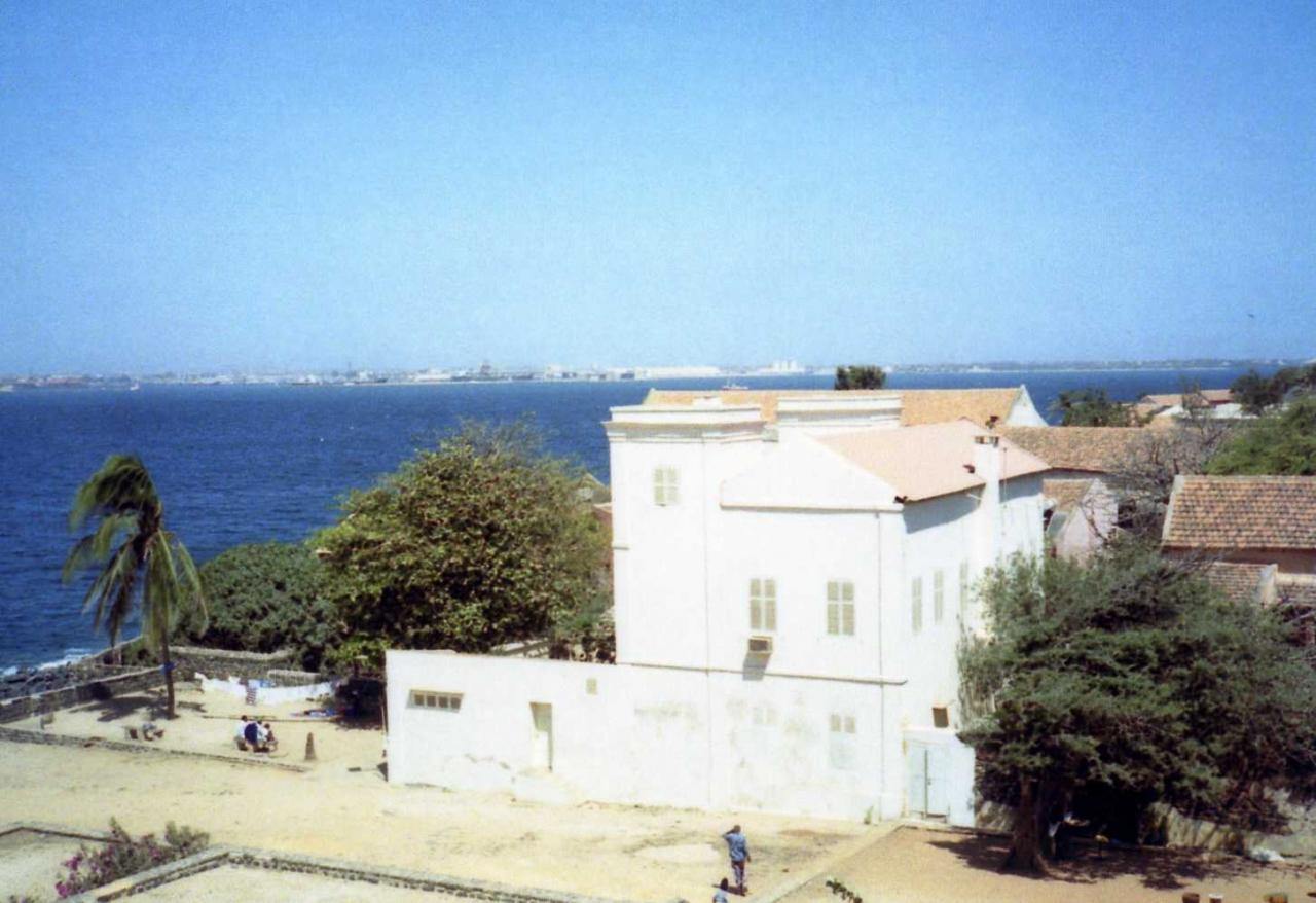 ゴレ島の画像 p1_37