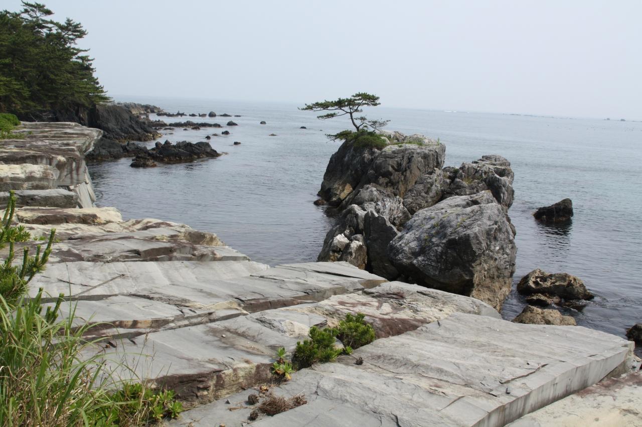 伊達吉村の画像 p1_38