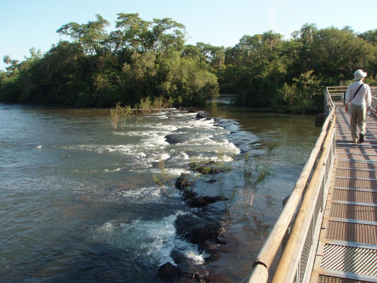 イグアス国立公園 (アルゼンチン)の画像 p1_35