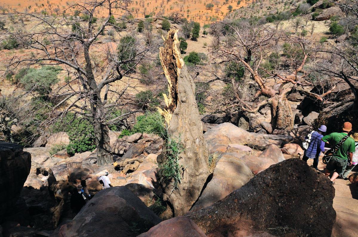 バンディアガラの断崖の画像 p1_5