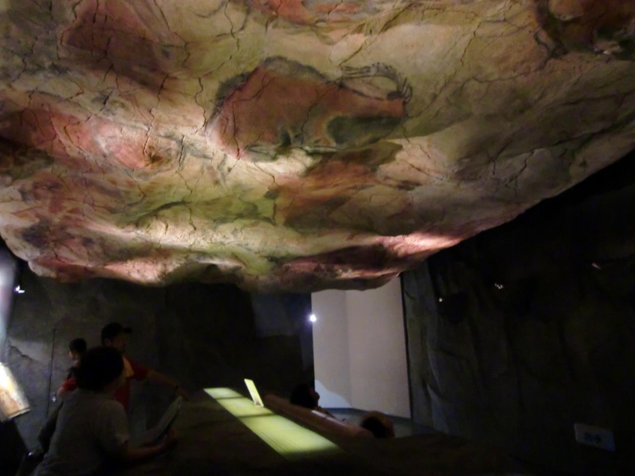 アルタミラ洞窟の画像 p1_11