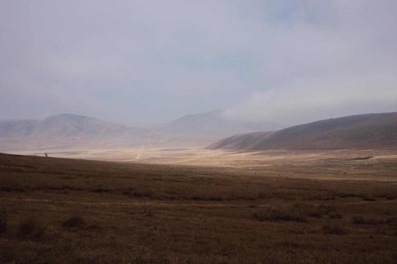 セレンゲティ国立公園の画像 p1_11