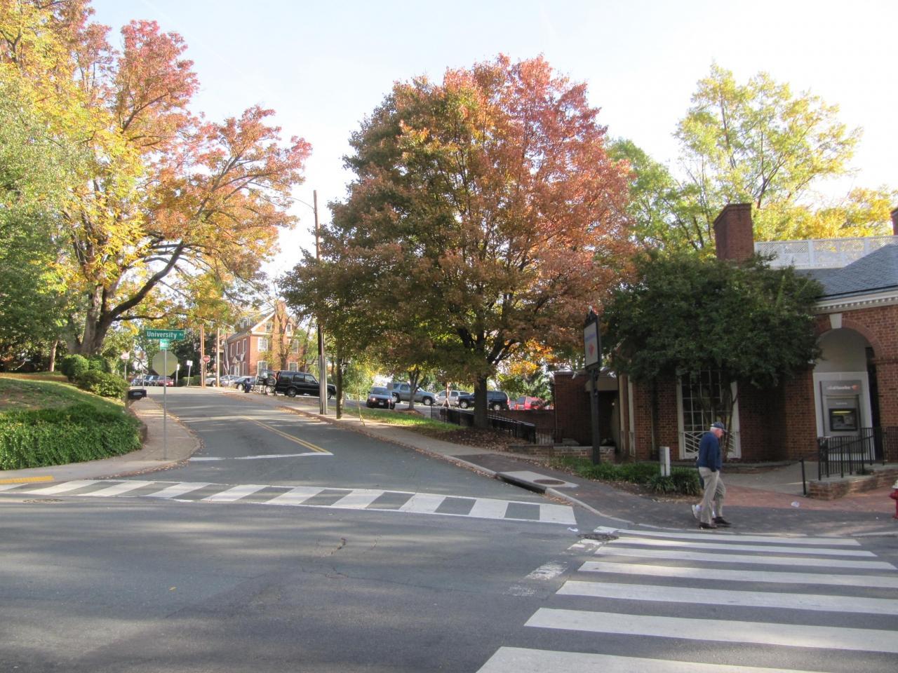 バージニア大学の画像 p1_23