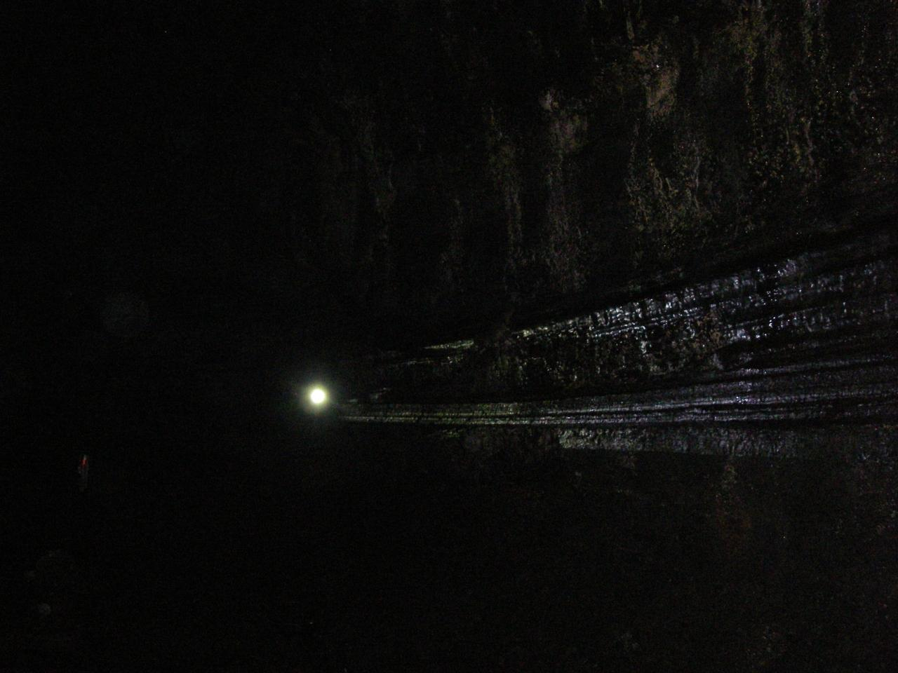済州の火山島と溶岩洞窟群の画像 p1_26