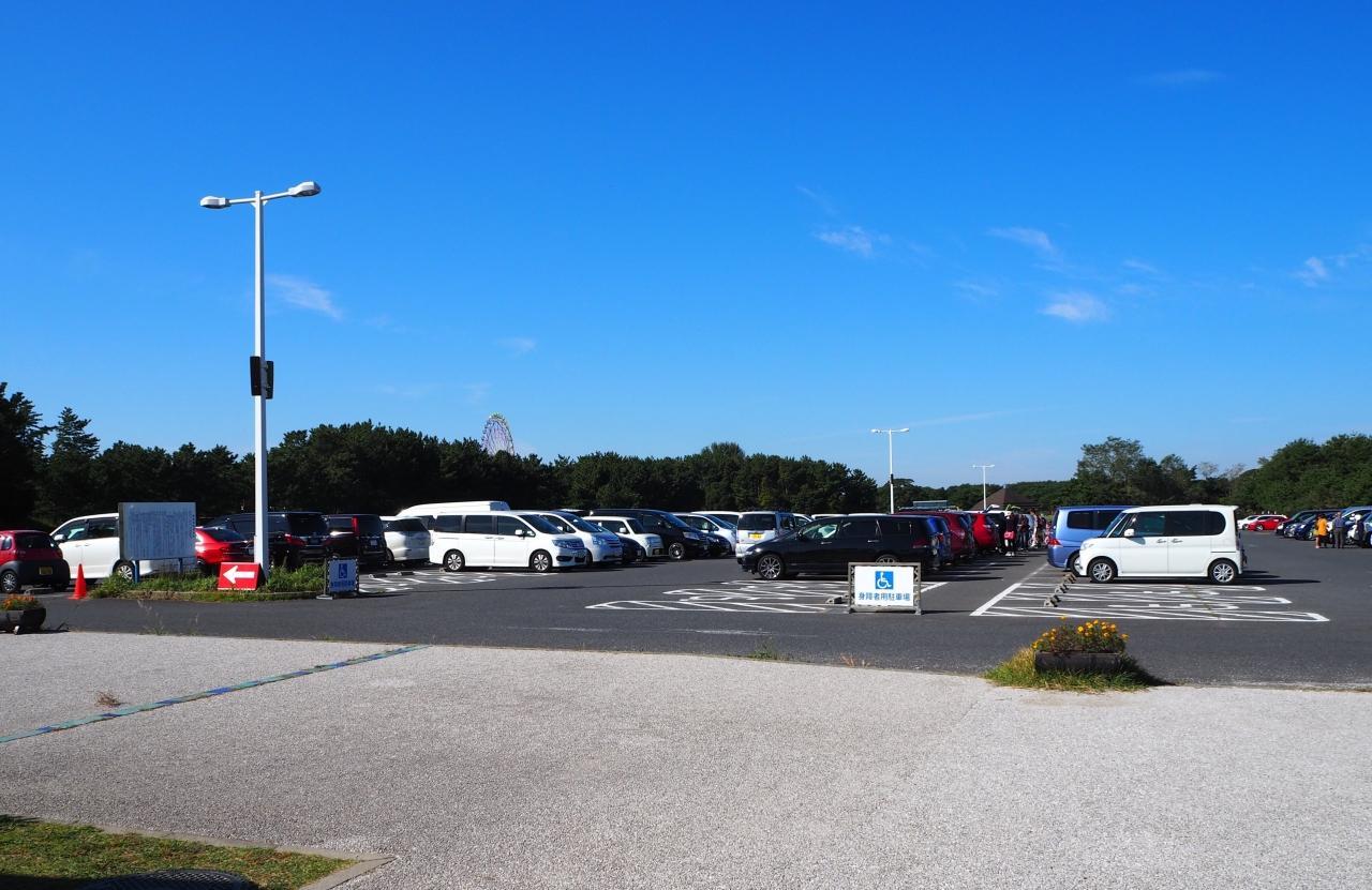 ひたち海浜公園 駐車場 臨時