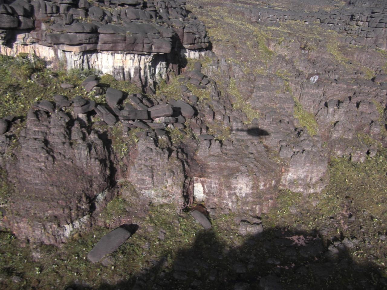 クケナン山の画像 p1_13