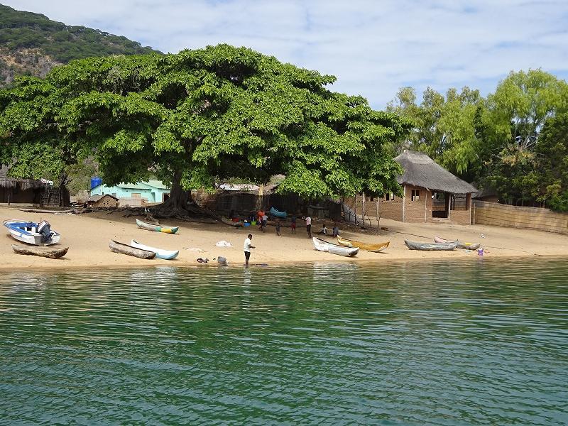 マラウイ湖国立公園の画像 p1_19