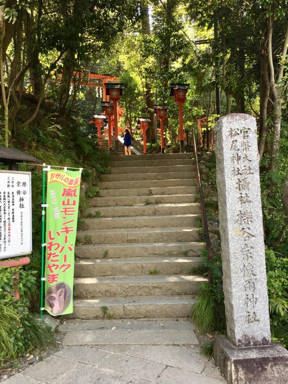 嵐山モンキーパーク 滑り台