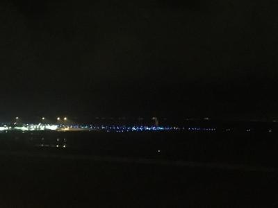 夜景が綺麗