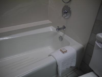 シャワーのカランは移動式。浴槽が浅い。