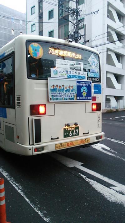 Lrg_15483336