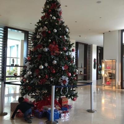 大きなクリスマスツリーが飾ってありました