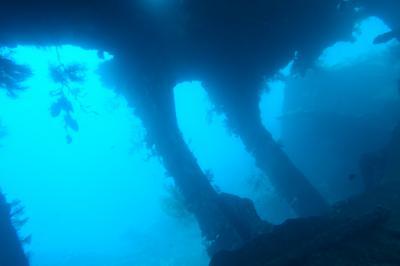 大きな貨物船が沈むダイビングポイント 頭に器材を乗せて運ぶポーターの女性も見どころ