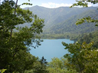 森に囲まれた神秘の湖
