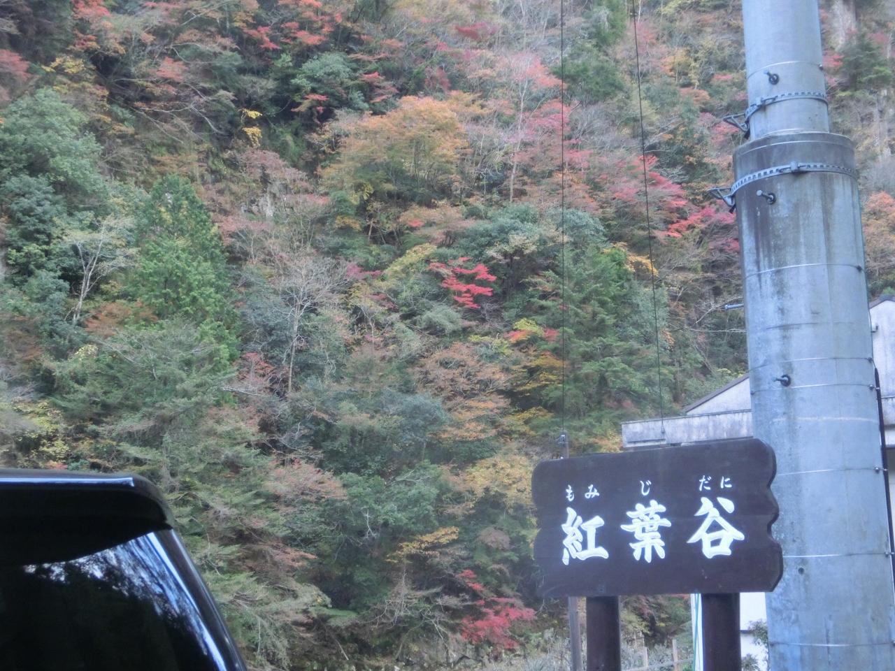 絶景と森林浴たっぷりの曽爾古道を歩く