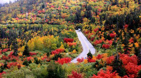 大自然の紅葉を巡る旅