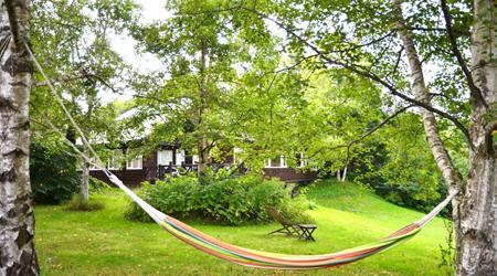 [十勝をぐるり]花と自然と畑の恵みを楽しむ旅(3)〜広大な敷地に建つ、緑に囲まれたB&B《Easy Living Terrace B&B》