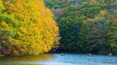 秋らしい景色を求めて裏磐梯へ 〜秋元湖、曲沢沼、毘沙門沼、達沢不動滝〜