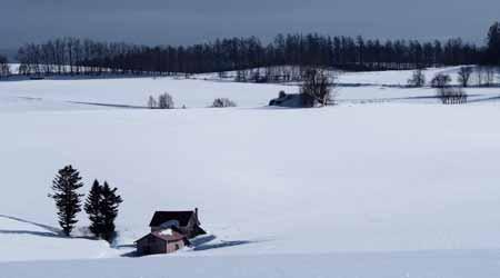 そうだ 美瑛、行こう2*・゜・*冬の美瑛一人歩き、ちょっとだけ富良野*・゜・*