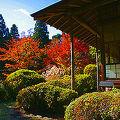 写真:ネストイン箱根