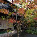 写真:古湯温泉 旅館 大和屋
