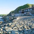写真:アザラシの見える宿 民宿スコトン岬