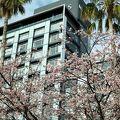 写真:熱海温泉 HOTEL MICURAS(ホテルミクラス)