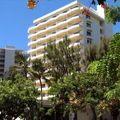 写真:Lotus Honolulu Hotel