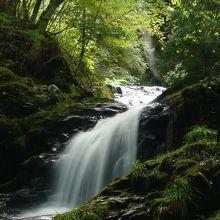 るり渓★美しい渓流と苔むした岩
