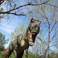 写真:カルガリー動物園