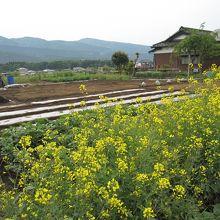 駒門風穴周辺はのどかな景色が広がっています。