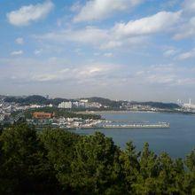 展望台から見た海の公園