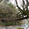写真:奥祖谷二重かずら橋