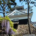 写真:岡崎城