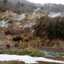 滝ノ上園地から見た、湯気立ち上る葛根田渓谷。