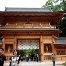 大山祇神社境内の古木に注目!