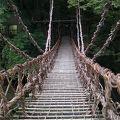 写真:祖谷のかずら橋