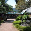 写真:澤乃井園 清流ガーデン