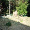 写真:日置山遺跡