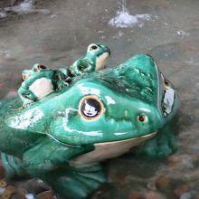 かえるカエル蛙